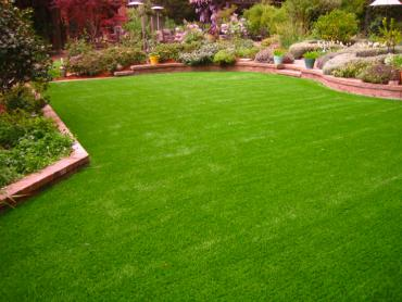 Artificial Grass Photos: Artificial Grass Carpet Covington, Ohio Landscaping, Backyard Landscaping Ideas
