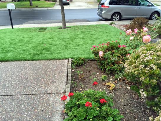 Artificial Grass Photos: Artificial Grass Installation Octa, Ohio Dog Park, Front Yard Ideas