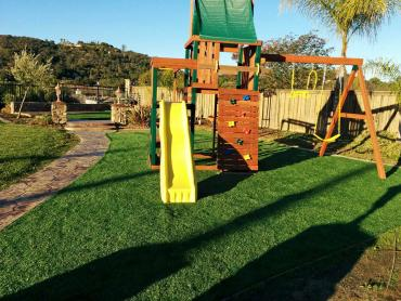 Artificial Grass Photos: Artificial Turf Cost Commercial Point, Ohio Athletic Playground, Backyard Design