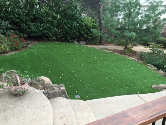 Artificial Grass Photos: Artificial Turf Installation Conesville, Ohio Design Ideas, Backyard Garden Ideas