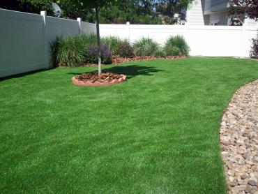 Artificial Turf Installation South Bloomfield, Ohio Lawn And Garden, Backyard artificial grass