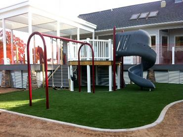 Artificial Grass Photos: Best Artificial Grass Frankfort, Ohio Kids Indoor Playground, Backyard Garden Ideas