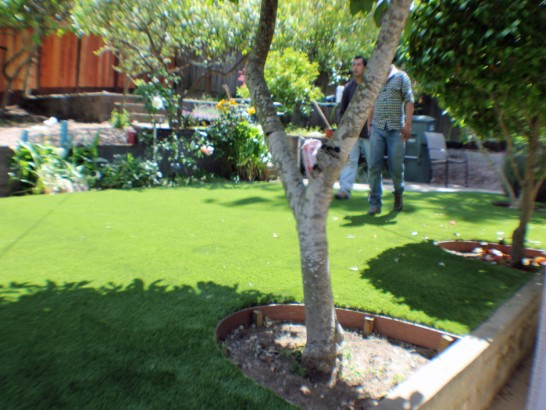 Artificial Grass Photos: Best Artificial Grass Hamden, Ohio Rooftop, Backyard Design