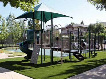 Artificial Grass Photos: Best Artificial Grass Mount Vernon, Ohio Indoor Playground, Parks