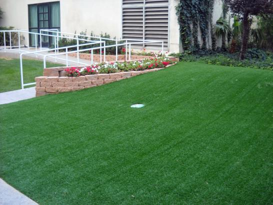 Artificial Grass Photos: Fake Grass Carpet Waldo, Ohio Backyard Playground, Front Yard Design