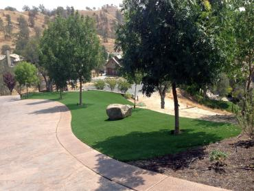 Artificial Grass Photos: Fake Grass Zanesfield, Ohio Landscaping, Front Yard Landscaping Ideas