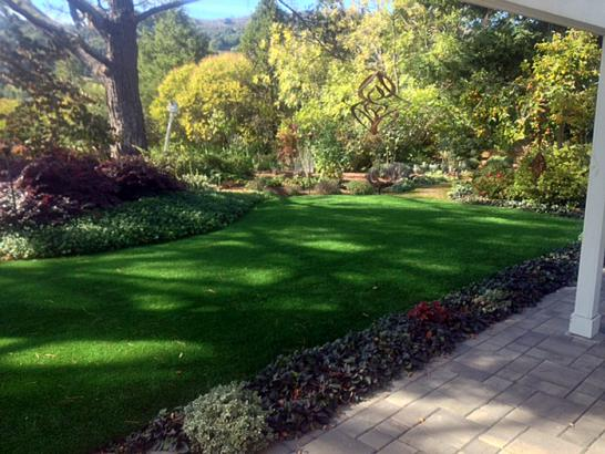 Artificial Grass Photos: Fake Lawn Carroll, Ohio Landscaping Business, Backyard Makeover
