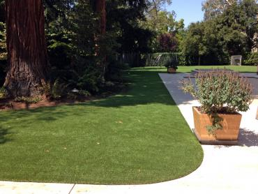 Artificial Grass Photos: Fake Lawn Haydenville, Ohio Grass For Dogs, Landscaping Ideas For Front Yard