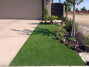 Artificial Grass Photos: Fake Lawn Patterson, Ohio Roof Top, Front Yard Design