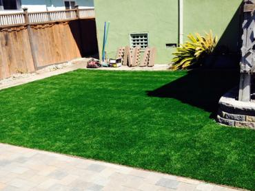 Artificial Grass Photos: Fake Lawn Waynesfield, Ohio Landscaping, Backyard Designs