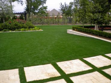 Artificial Grass Photos: Fake Turf Antioch, Ohio Home And Garden, Backyards