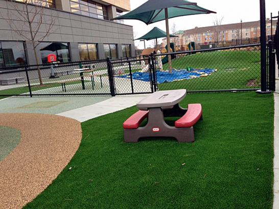 Artificial Grass Photos: Fake Turf Catawba, Ohio City Landscape, Natural Swimming Pools