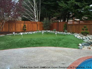 Grass Carpet Blacklick Estates, Ohio Landscape Ideas, Backyards artificial grass