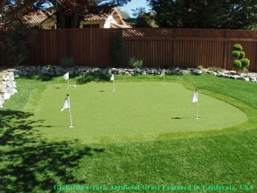 Grass Carpet Lincoln Village, Ohio Golf Green, Small Backyard Ideas artificial grass