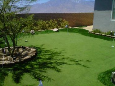 Artificial Grass Photos: Grass Carpet Northridge, Ohio Lawns, Backyard Designs