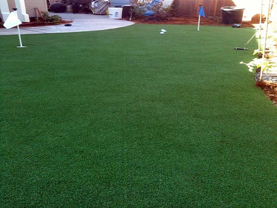 Artificial Grass Photos: Grass Turf Ostrander, Ohio Rooftop, Backyard Design