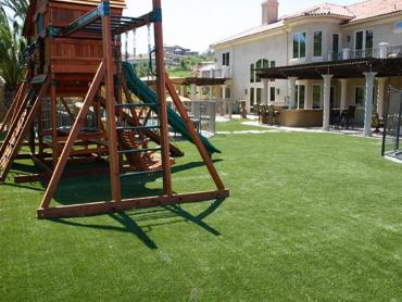 Artificial Grass Photos: Grass Turf Prospect, Ohio Lawn And Garden, Backyards