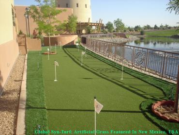 How To Install Artificial Grass Marble Cliff, Ohio Putting Green Turf, Backyard Ideas artificial grass