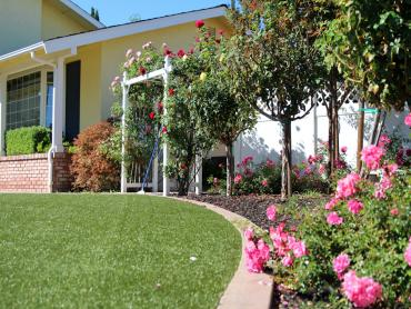 Artificial Grass Photos: Lawn Services Brookville, Ohio Gardeners, Front Yard