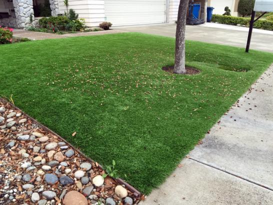 Artificial Grass Photos: Lawn Services Fultonham, Ohio City Landscape, Front Yard Design