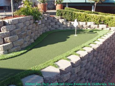 Synthetic Grass Cost Upper Arlington, Ohio Artificial Putting Greens, Backyard Landscape Ideas artificial grass