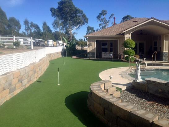 Artificial Grass Photos: Synthetic Grass Cost Williamsport, Ohio Putting Green Turf, Backyard Makeover