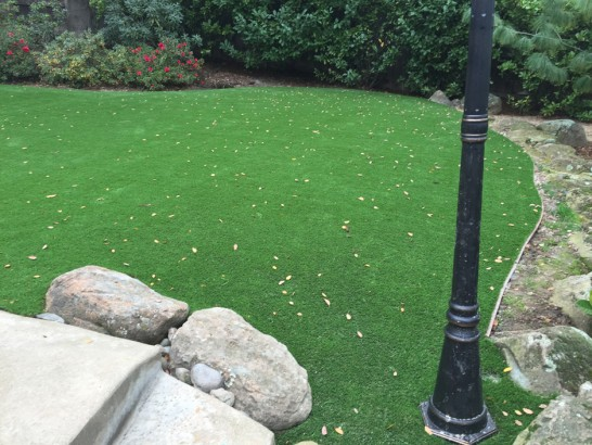 Artificial Grass Photos: Synthetic Grass Riverside, Ohio Home And Garden, Small Backyard Ideas