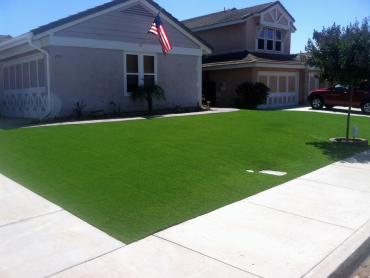 Artificial Grass Photos: Synthetic Grass Rushsylvania, Ohio Roof Top, Front Yard Landscaping Ideas