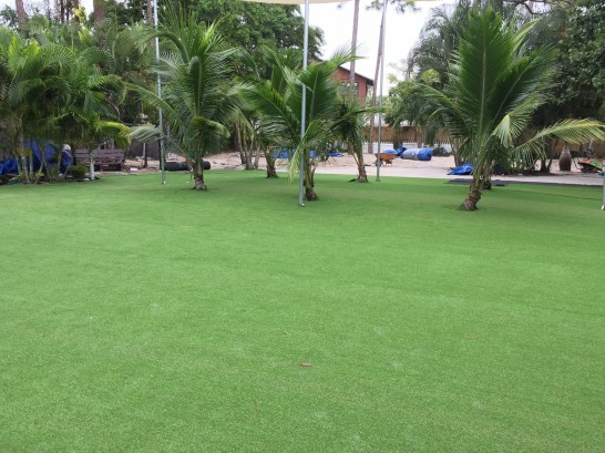Artificial Grass Photos: Synthetic Lawn Albany, Ohio Roof Top, Commercial Landscape