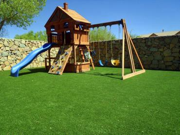 Artificial Grass Photos: Synthetic Lawn Oakwood, Ohio Upper Playground, Backyard Design