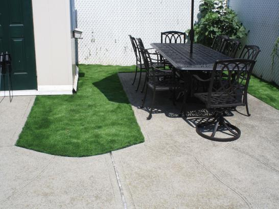 Artificial Grass Photos: Synthetic Lawn Rosemount, Ohio Landscape Ideas, Backyard Design