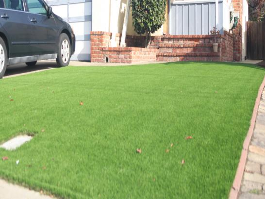 Artificial Grass Photos: Synthetic Lawn Zanesfield, Ohio Home And Garden, Front Yard Landscaping Ideas