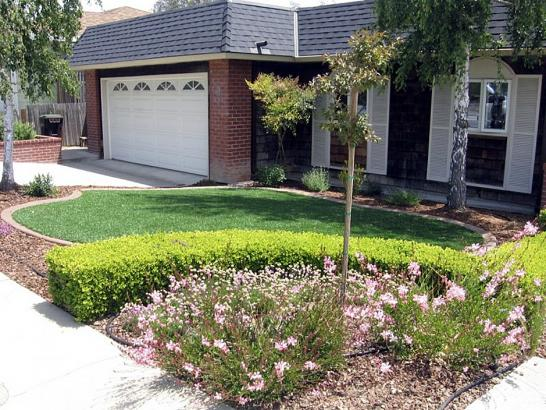 Artificial Grass Photos: Synthetic Turf Corning, Ohio Gardeners, Small Front Yard Landscaping
