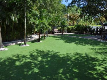 Artificial Grass Photos: Synthetic Turf Northridge, Ohio Backyard Playground, Commercial Landscape