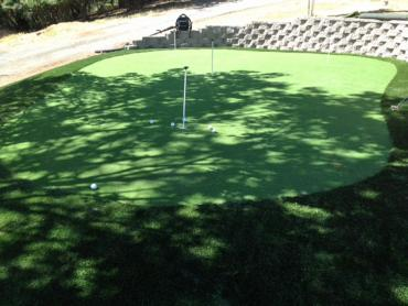 Synthetic Turf Supplier Cheshire, Ohio Indoor Putting Green, Backyard Designs artificial grass