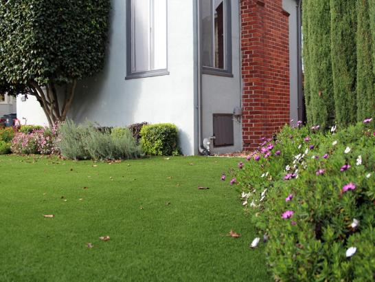 Synthetic Turf Supplier Sulphur Springs, Ohio Design Ideas, Front Yard Landscaping artificial grass
