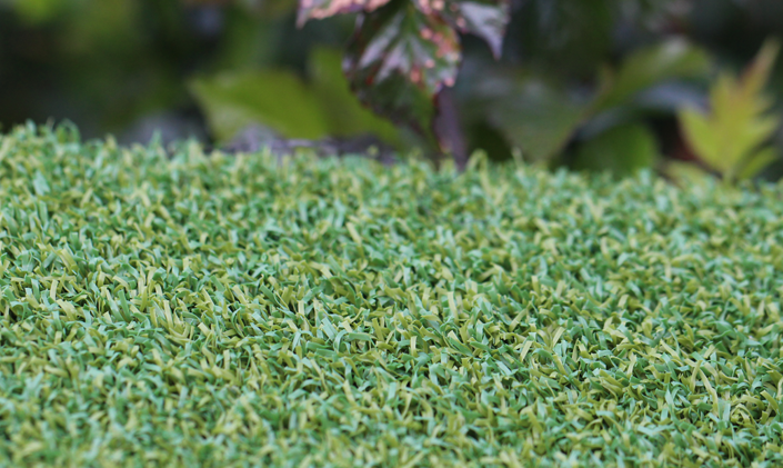 Artificial Grass Putt-46 BiColor Artificial Grass Columbus Ohio